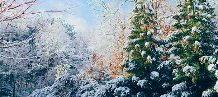 winter is a wonderful time to enjoy shopping, dining, and the wonderful sights in Chalfont, Bucks County PA